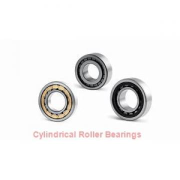 160 mm x 290 mm x 80 mm  KOYO NUP2232R cylindrical roller bearings
